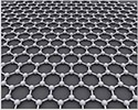 EM-Tec 6-8 layers graphene TEM support film on Lacey carbon on 300 mesh Cu grids, 5ks/balení