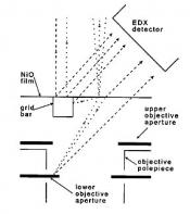 650 Pelco ® NiOx Test specimen 3,05mm grid