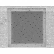 S181-8 Circular hole, 5um dia., separation 20um, grid Au 300 mesh, 10 ks/bal